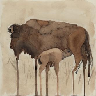 buffallo 2 email