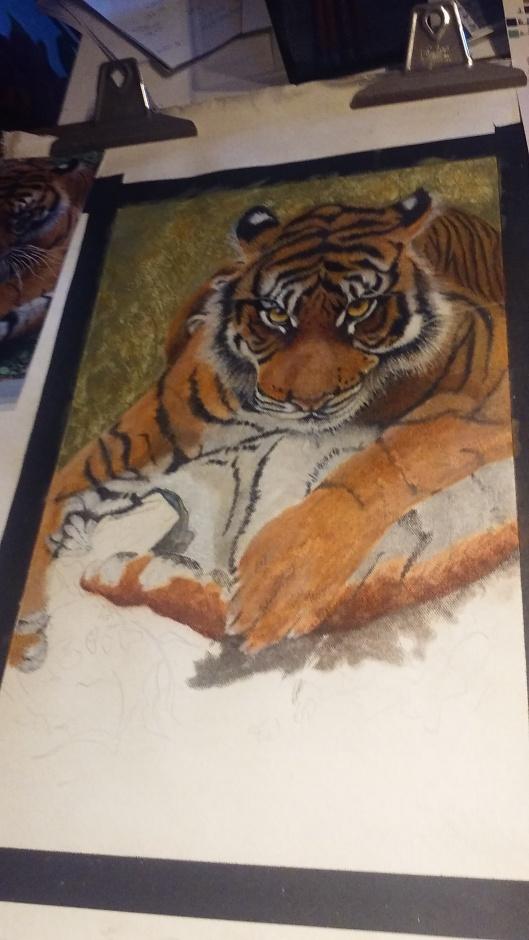 h-tiger2